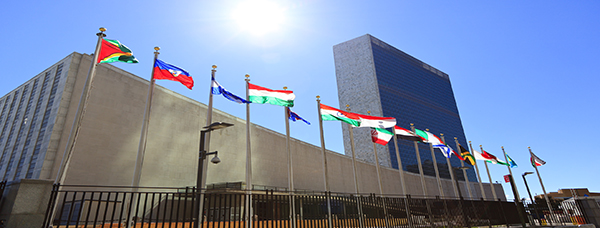 UN General Assembly NY 600 x 228