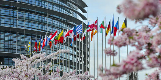 European Parliament in Strasbourg under the cherry Blossom trees