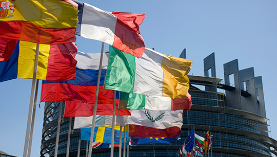 FLAGS-European-Parliament-Strasbourg