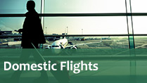passport domestic flights