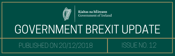 Government Brexit Update 21 December 2018