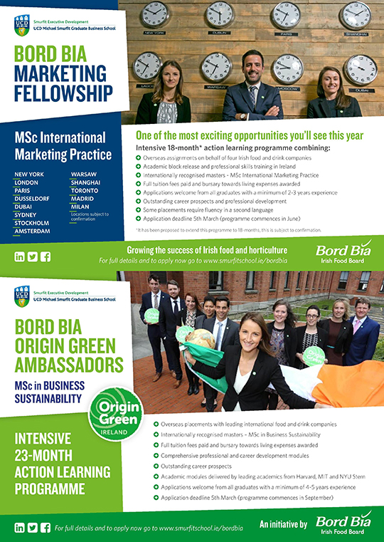 Bord Bia Marketing Fellowship and Origin Green Ambassador programme flyer