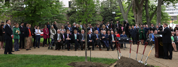 Capitol Hill Tree Planting