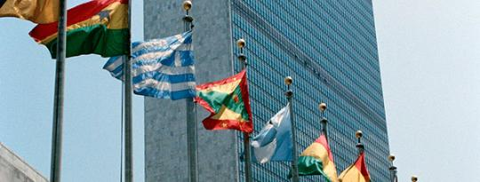 United Nations MS flags